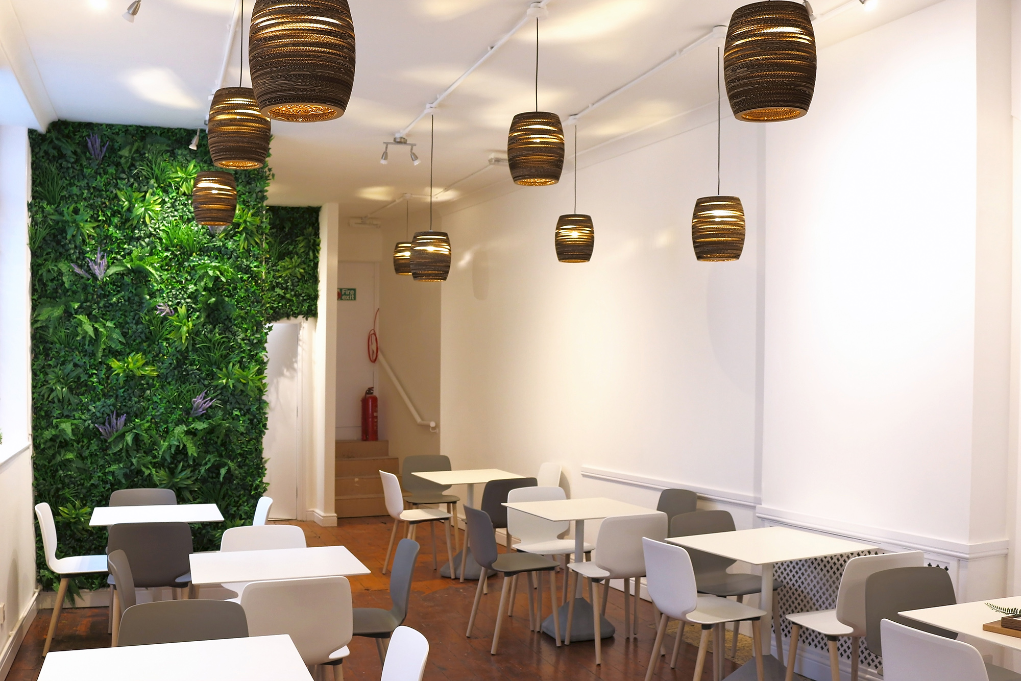 Chatime Nottingham, live wall, cardboard lampshade, interior Design Nottingham, Dezigne